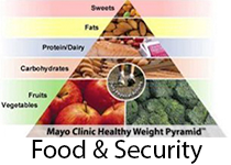 co_food_security